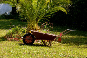Der Garten Picture